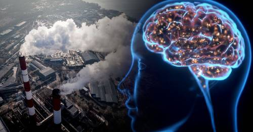Estudio vincula la contaminación del aire con la pérdida de memoria en los jóvenes