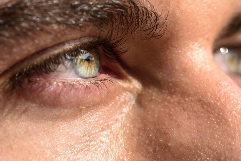 Ojos Verdes 8 Datos Curiosos Que Seguro No Sabías De Ellos