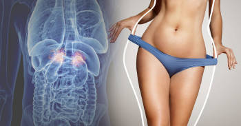 Cuáles son las hormonas que te ayudan a aldegazar y qué tienes que hacer para activar cada una