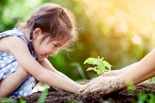 Escuelas sustentables: espacios para que los niños aprendan a cuidar el planeta