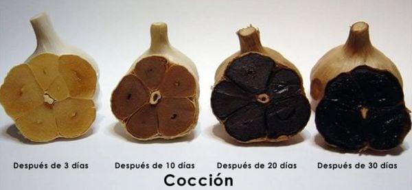 proceso_del_ajo_negro