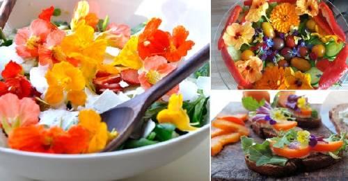 Flores comestibles: un jardín en tu cocina