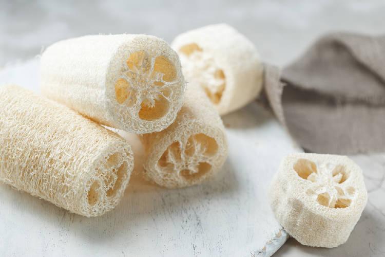 esponja de luffa una opcion sustentable y consciente para la cocina y la ducha