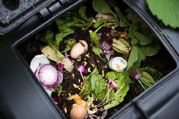 Residuos orgánicos en una compostera