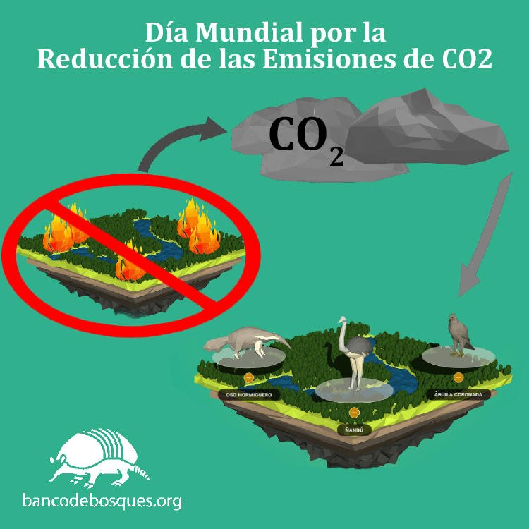 Bosques CO2