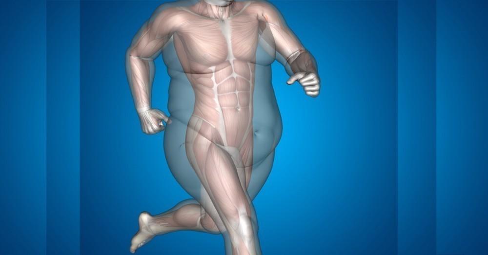 como puedo bajar de peso sin ir al gym