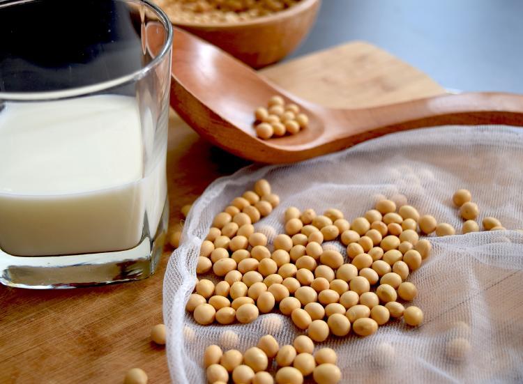 leche de soya