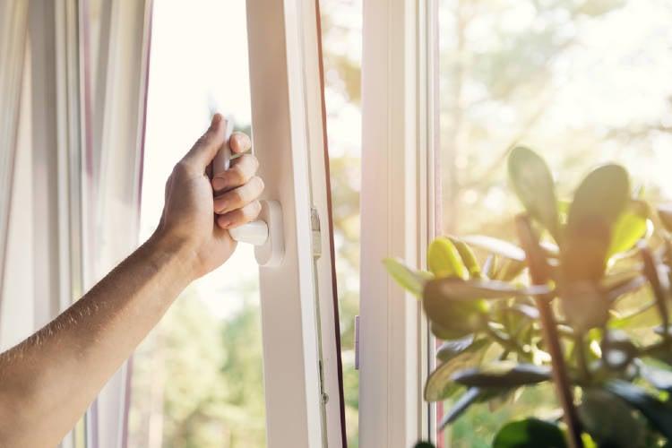 Cómo purificar el aire de tu casa