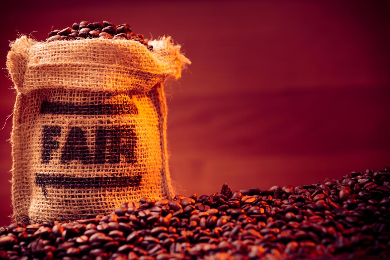 ¿Qué es el Comercio Justo (Fair Trade) y qué iniciativas existen?