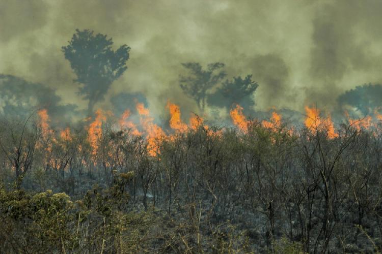 incendios-delta