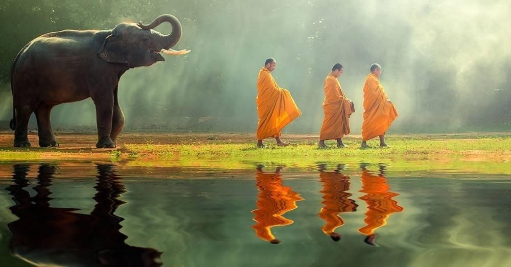 25 frases budistas que nunca olvidarás