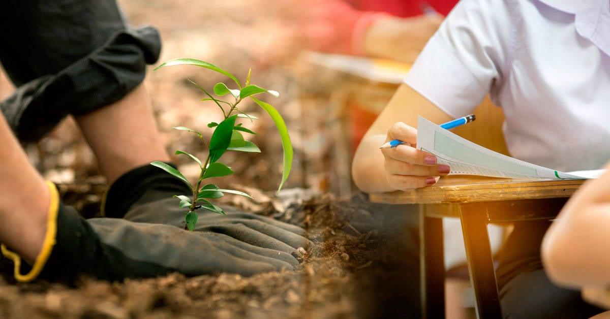 Todos los estudiantes deberán plantar 10 árboles para graduarse en Filipinas