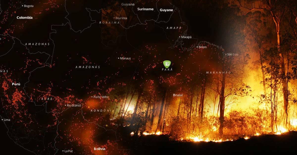 Más de 2000 nuevos incendios complican la situación en el Amazonas