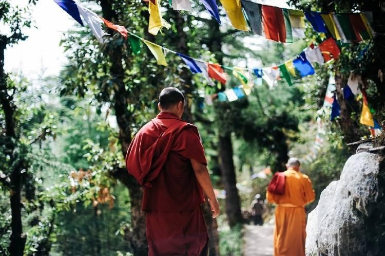 adult-back-view-buddha-750895 (1)