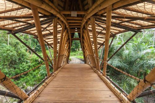 The Green School: conoce la escuela ecológica y sustentable de Bali