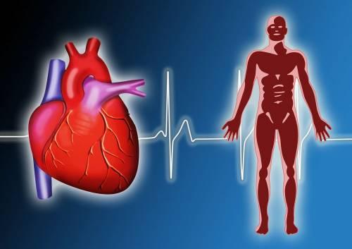¿Sabías que existe el síndrome del corazón roto?