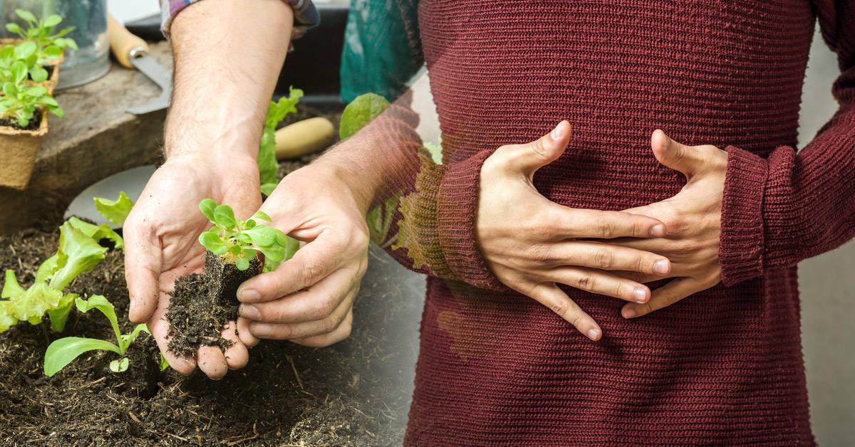 Un nuevo informe señala las claves de la alimentación para cuidar al planeta