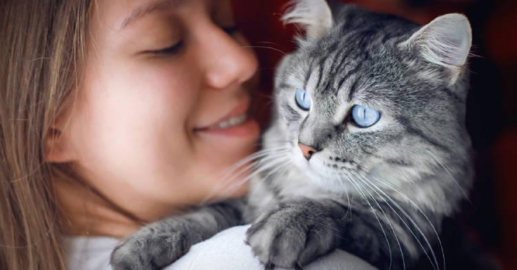 pueden-gatos-predecir-muerte