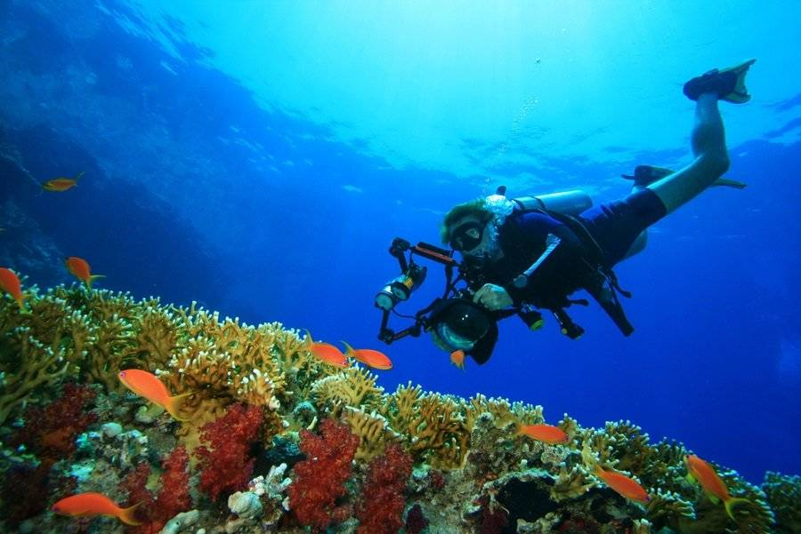El Caribe se une contra el plástico de un solo uso