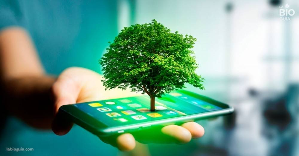 4 apps sustentables que te volverán más consciente
