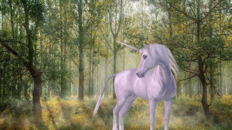 Ilustración de un unicornio blanco en un bosque