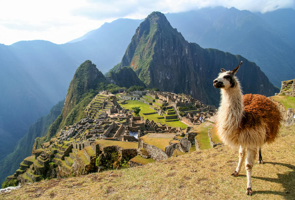 Después de siete meses, Machu Picchu reabrirá sus puertas en noviembre