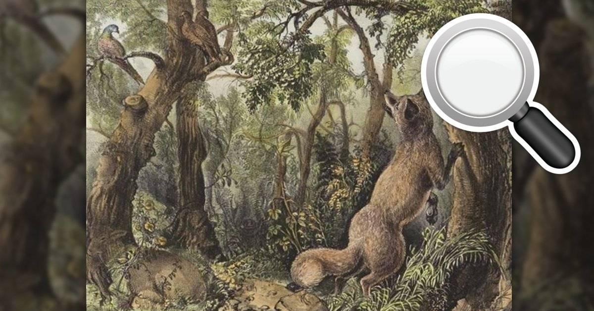 TEST: En esta imagen hay rostros y animales ocultos (si los descubres eres capaz de develar cualquier cosa)