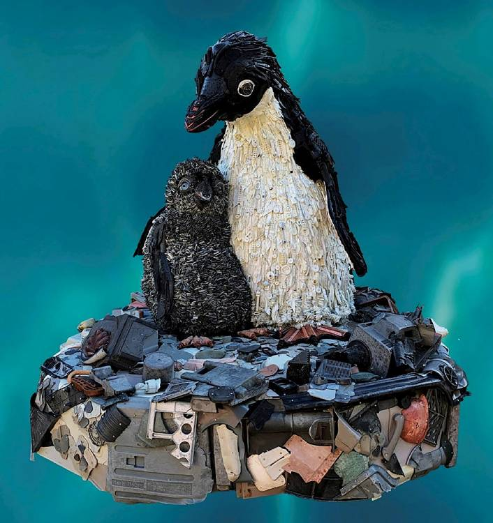 pinguino basura
