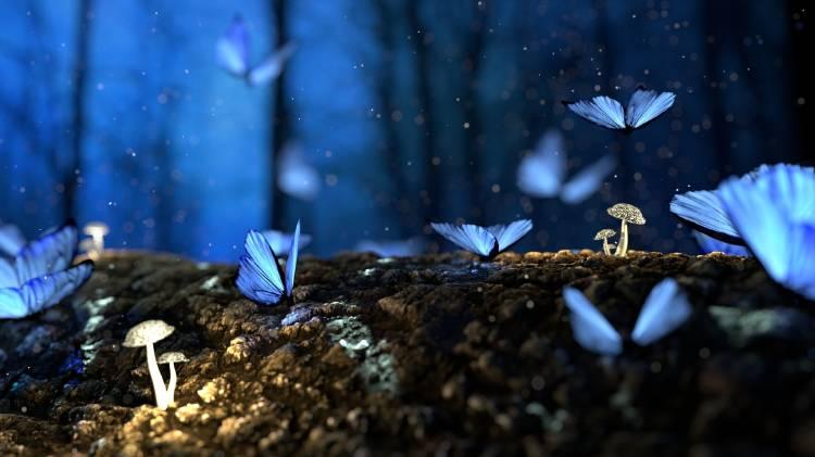 Mariposas azules volando