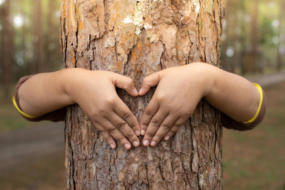 Los árboles tienen un latido similar al corazón humano