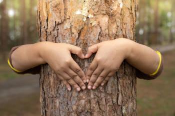 niña abraza a un arbol y realiza el simbolo del corazon con sus manos
