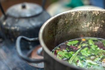 ayahuasca bebida tradicional que se realiza con la decoccion de dos plantas tipicas del amazonas