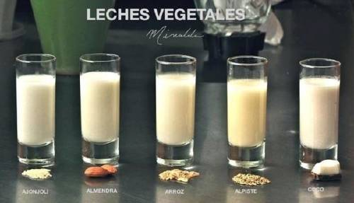 Leches vegetales: beneficios y cómo hacerlas