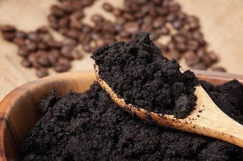 Cómo usar café para mejorar tu jardín o huerto