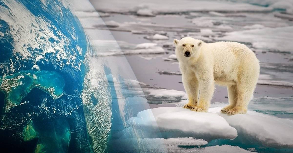 Los científicos determinaron en que año el calentamiento global será catastrófico (y falta muy poco)