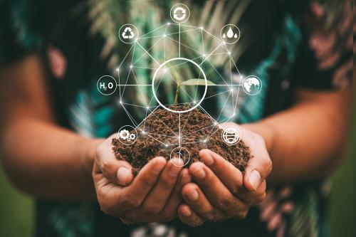 Desarrollo sostenible, sustentable y sostenido: ¿son lo mismo?