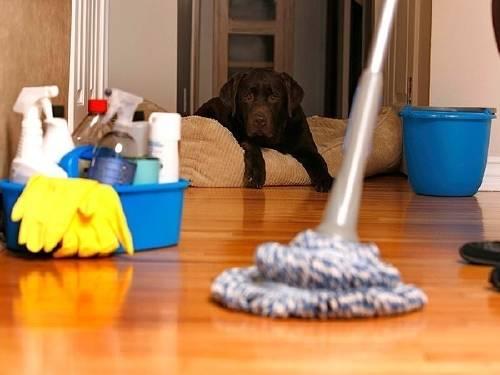 16 trucos poco comunes para limpiar y organizar tu hogar en la mitad del tiempo