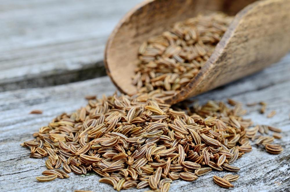 Alcaravea: una especia con maravillosas propiedades medicinales