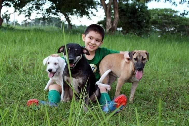 Este niño de 10 años montó su propio refugio de animales