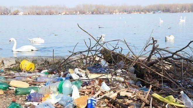 Esta nueva enzima brinda nuevas oportunidades para el reciclado de plásticos de base biológica