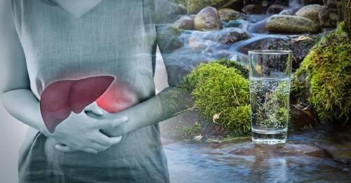 """""""Agua cruda"""": ¿de verdad es saludable?"""