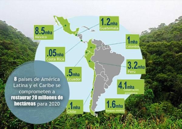 Un grupo de países latinoamericanos restaurará 20 millones de hectáreas de ..