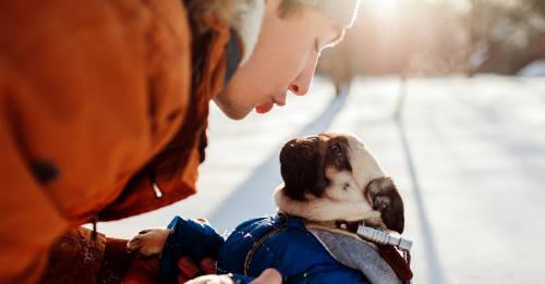 Las personas que hablan con sus mascotas tienen una cualidad excepcional