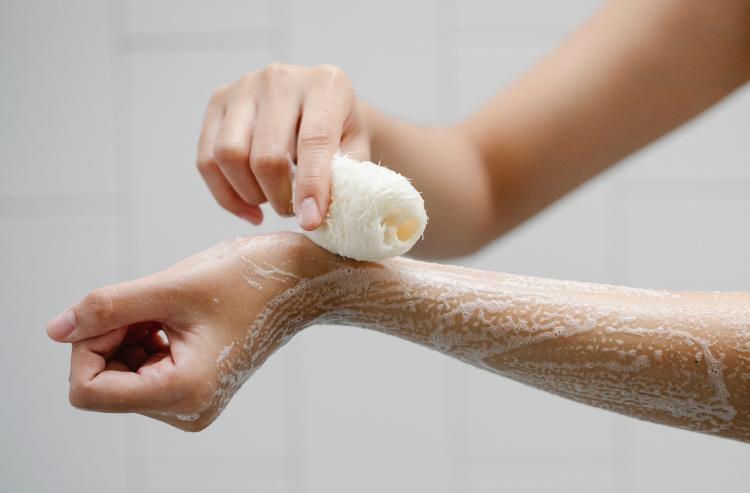 Esponja vegetal baño