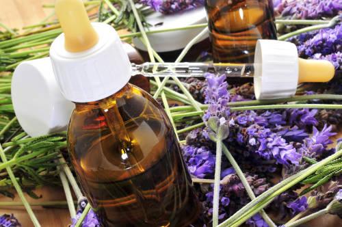Flores de Bach: La terapia alternativa que mejora la salud
