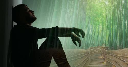 La fábula del helecho y el bambú que deberías leer cuando pases por un momento difícil
