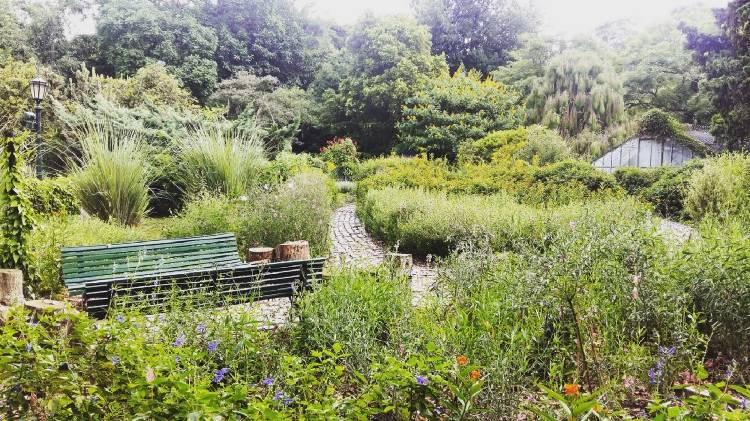 Jardín de mariposas en la Ciudad