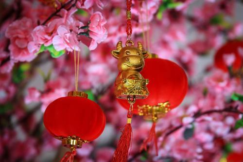 Año nuevo chino 2021: predicciones para el año del Buey de Oro