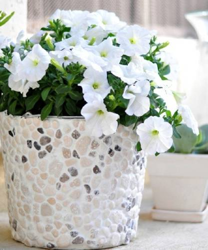 Cómo hacer macetas decoradas con piedras naturales