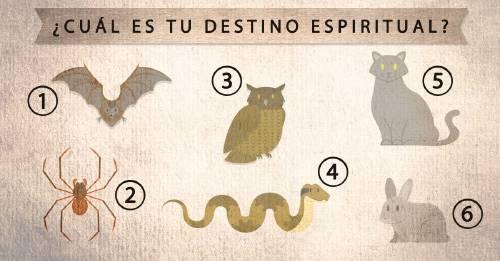 Elige un animal y descubre cuál es tu destino espiritual